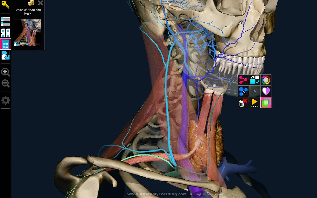 3D Anatomy Learning para Android
